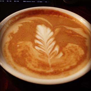 Coffee leafs
